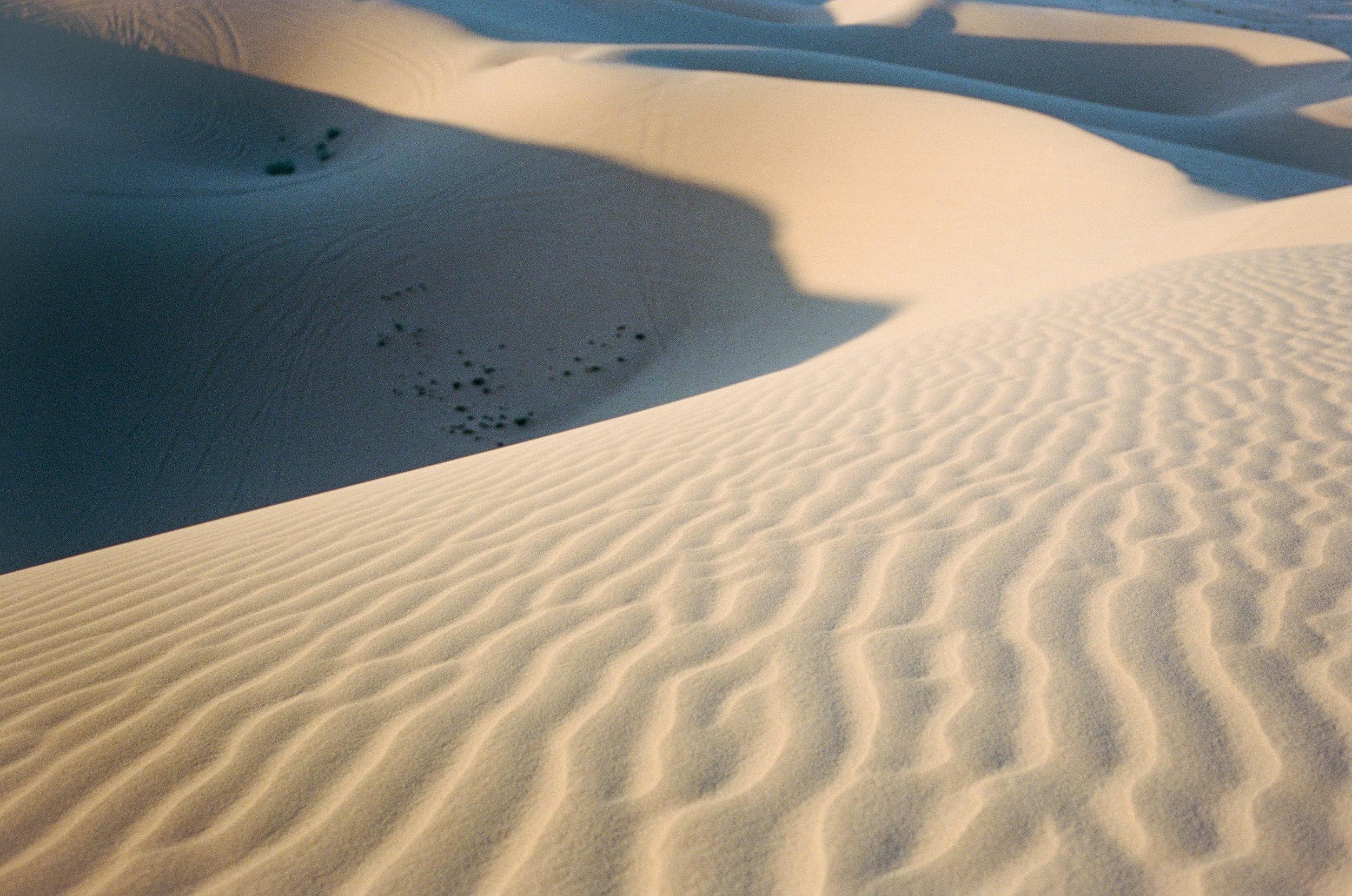 Sand Dunes_#9871-11.jpg