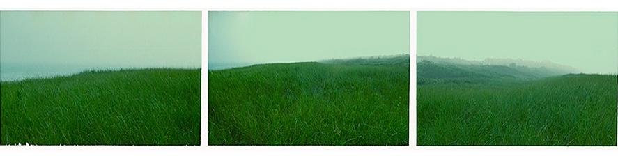 Greenscape      -