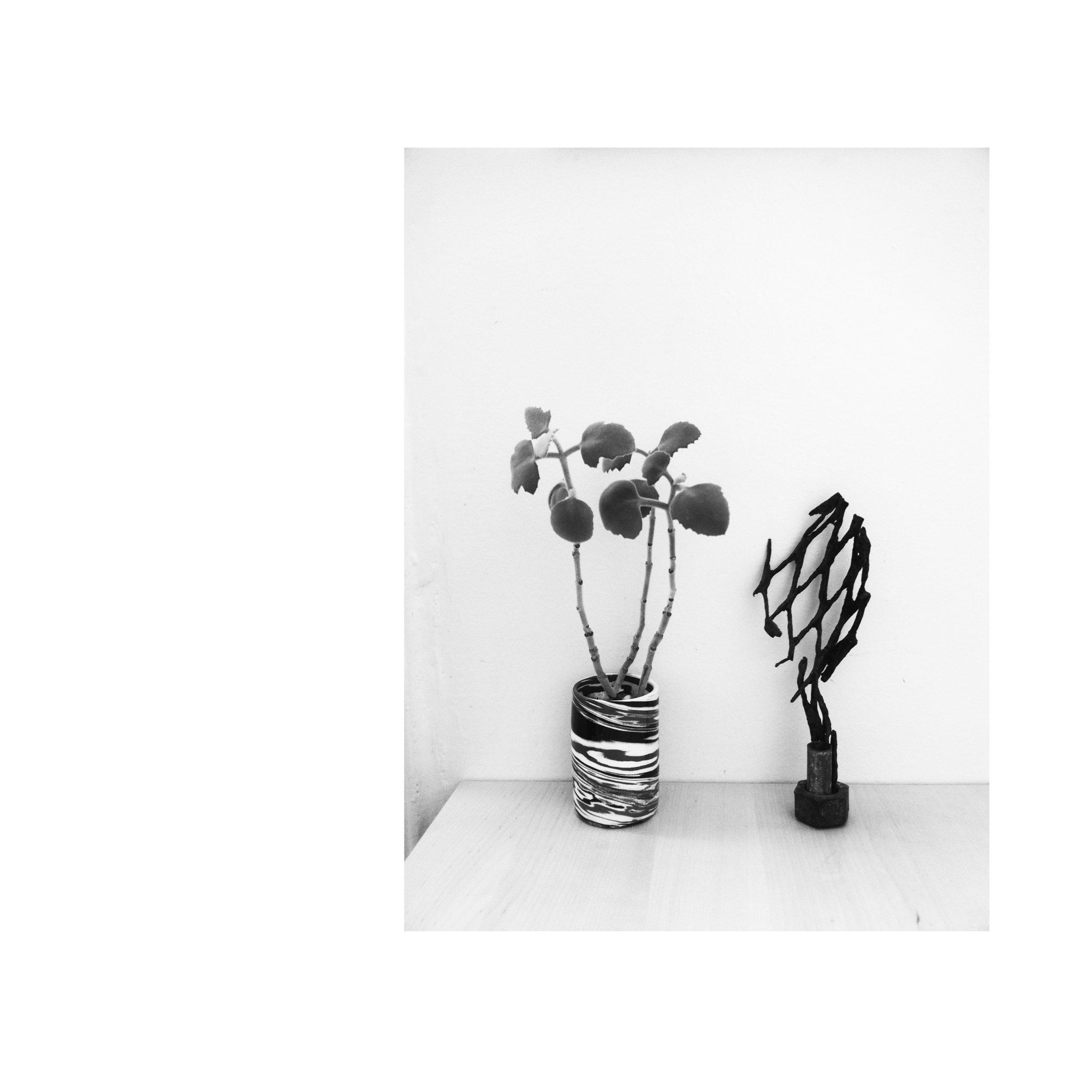 Bouquet_Cover_In a Dream.jpg