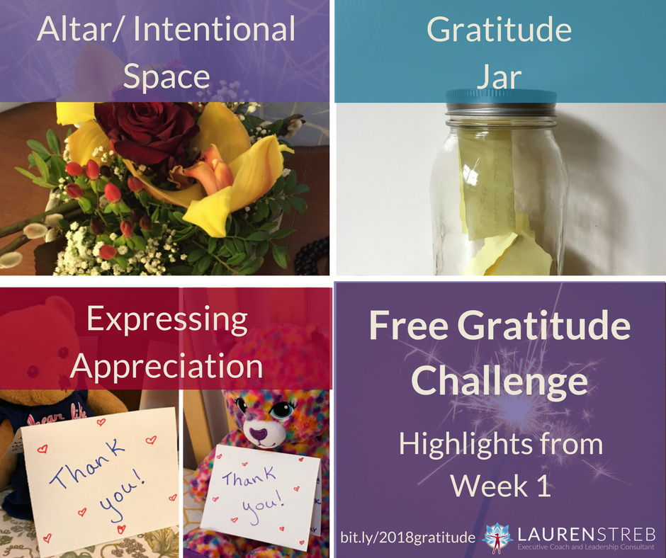 Free Gratitude Challenge - Experience the multiple personal and professional benefits of having a gratitude practice. Experiment with different 5-minute activities to find the ones fit your life. This email challenge includes videos and optional discussions on Facebook.
