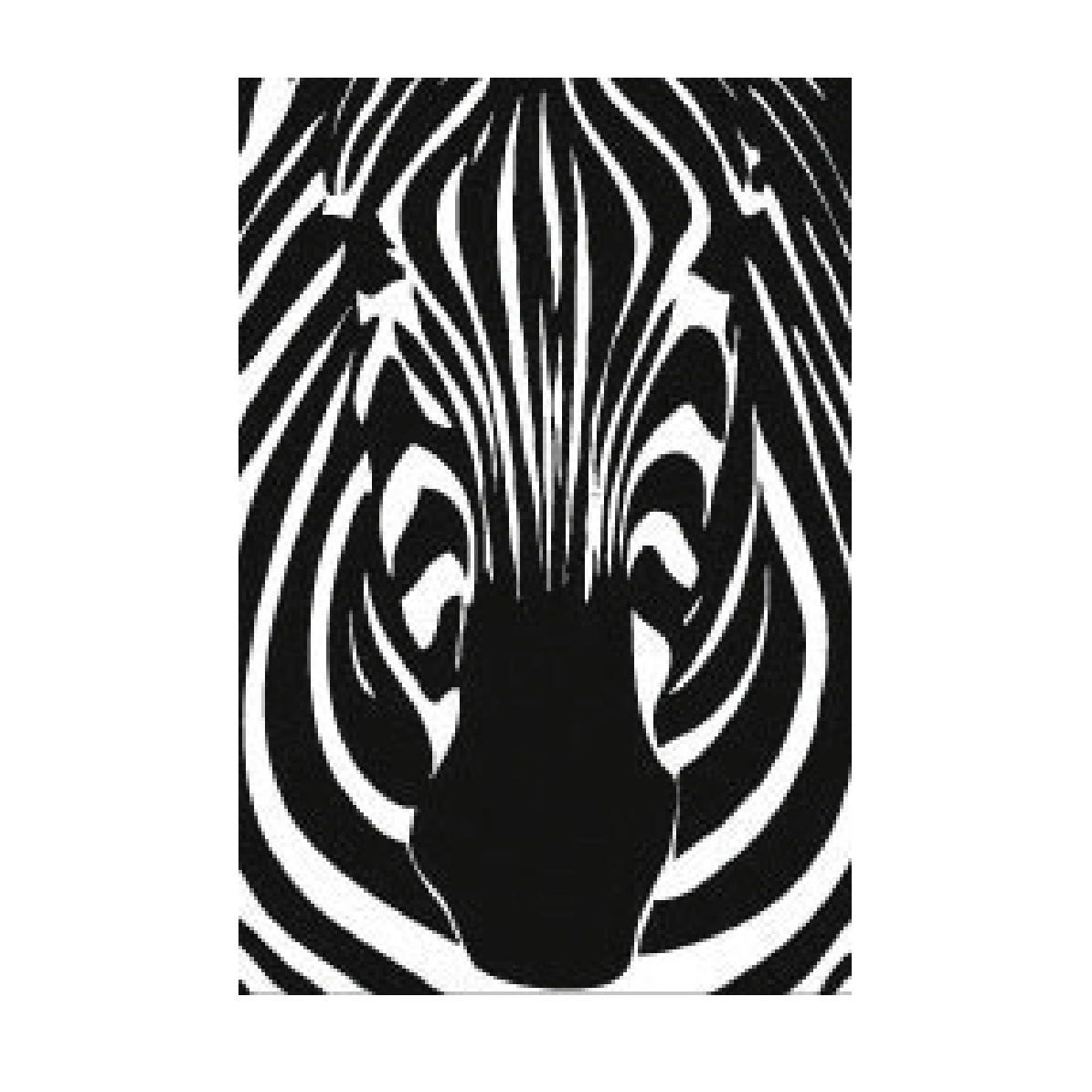 ZEBRA_PRODUCTS.png