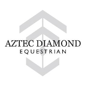AZTEC_DIAMOND.png