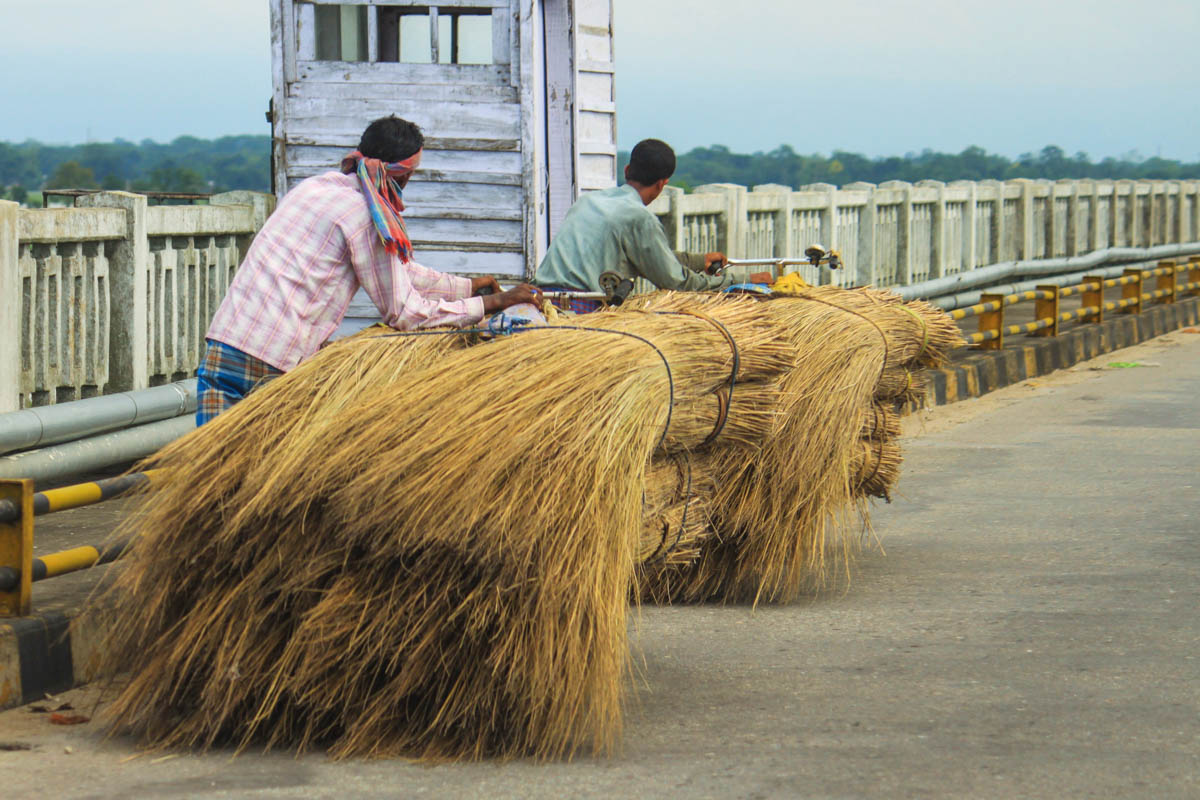 Cattle-feed sellers - Tezpur, May 2010