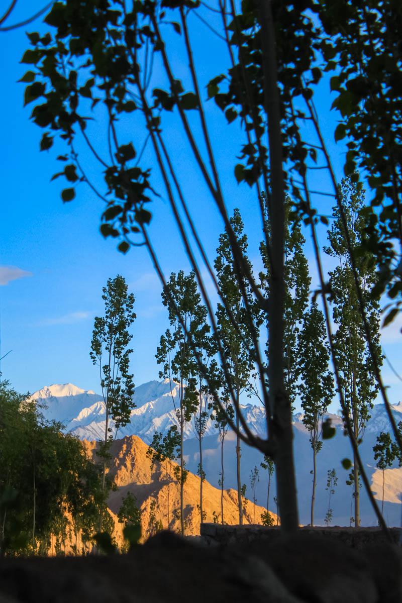 View from Cho Palace, Leh, May 2010