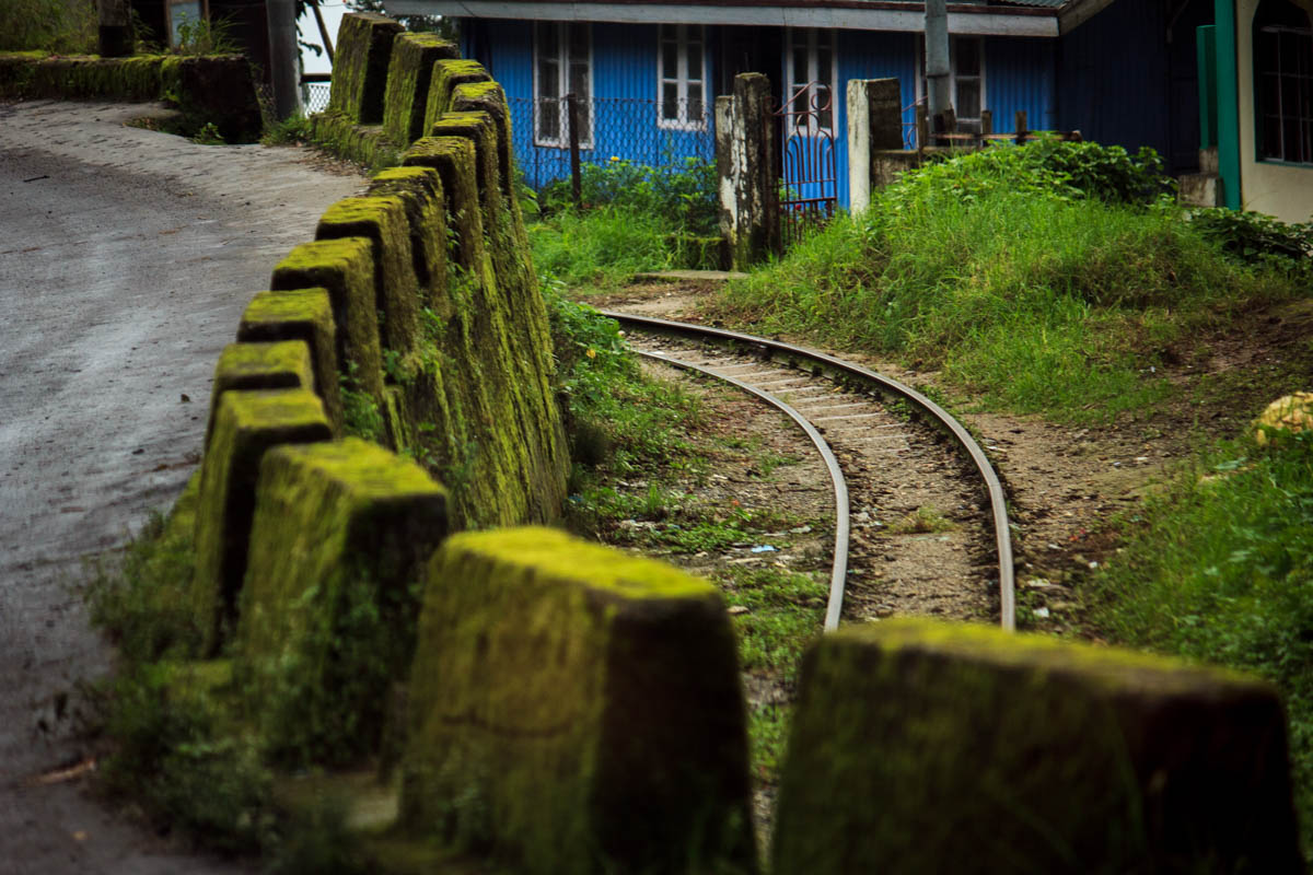 Roads wind and tracks cross - Darjeeling, August 2014