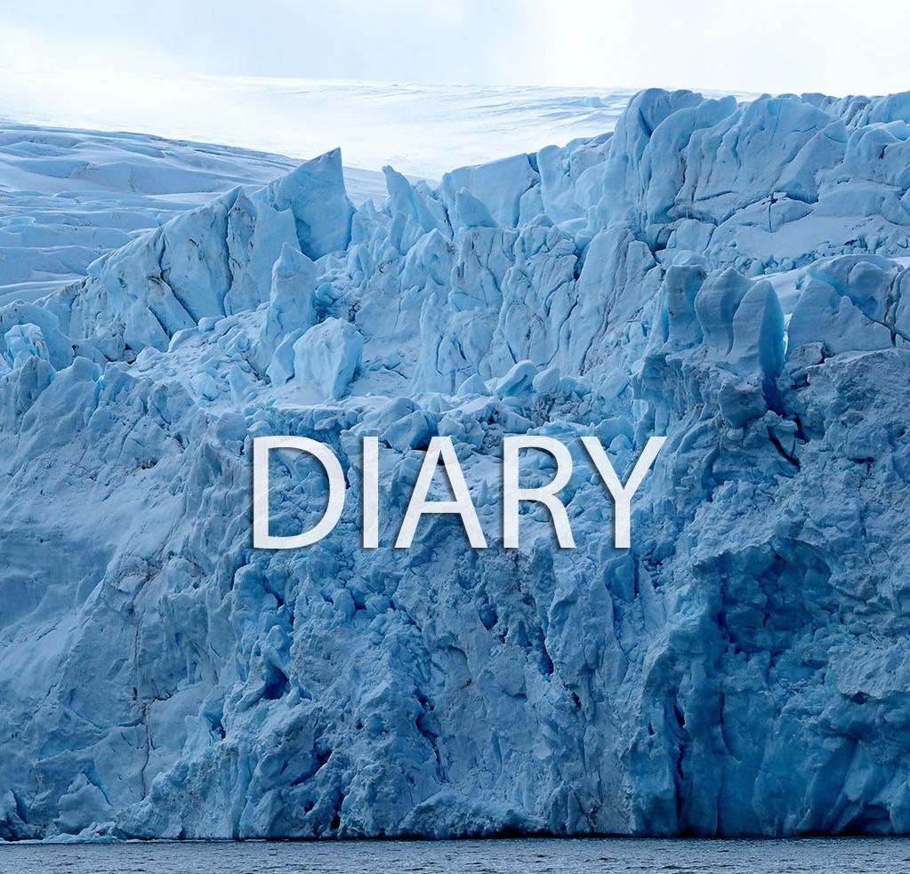 DiaryImageLink.jpg