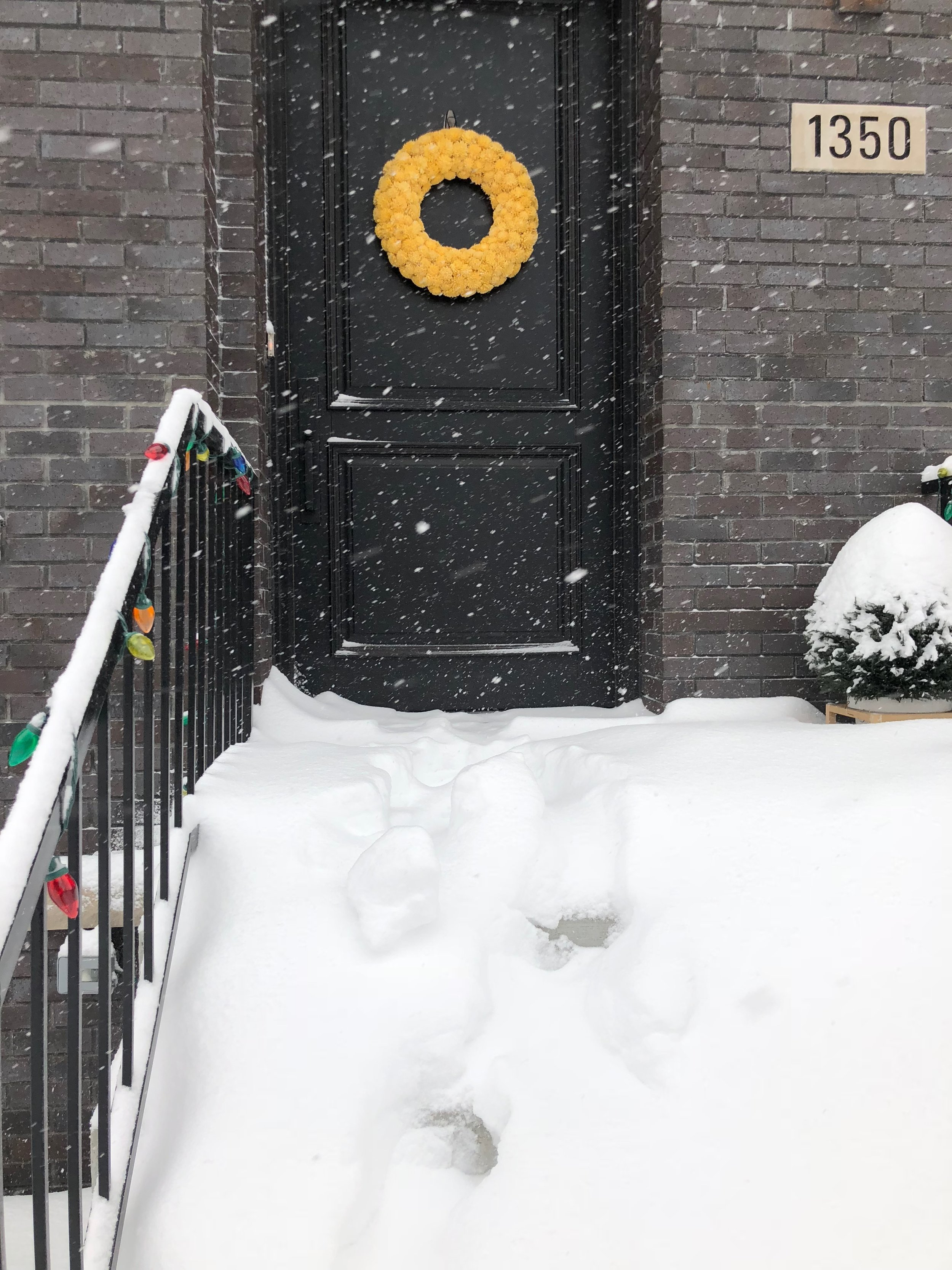 Don't mind the snow!  Shola  flower wreath  - yellow.