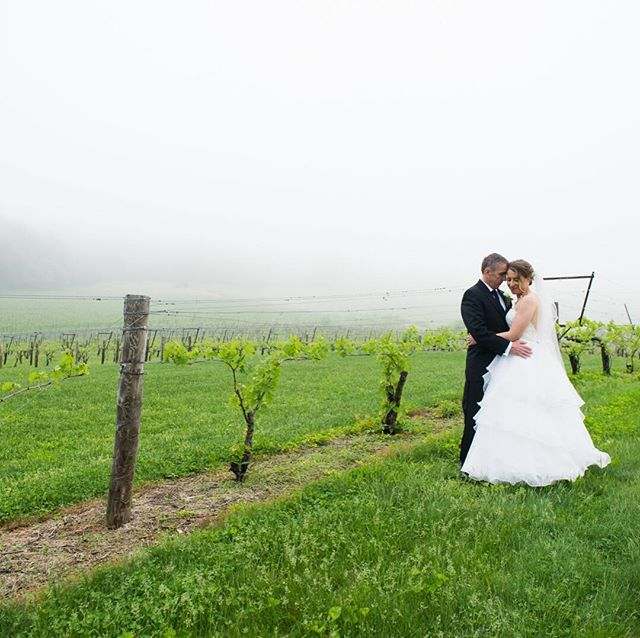 Who doesn't love a winery wedding - and check out that amazing fog!! So in love with Jen and Ken's wedding at Breaux Vineyard! Venue: @Breauxweddings  #thelockandco #breauxwedding #northernvirginia #loudouncountyphotographer #northernvirginiaphotographer #loudouncounty #novaweddingphotographer #novaweddings #winerywedding #visitloudoun #loudounphotographer #bride #groom #happilyeverafter #love