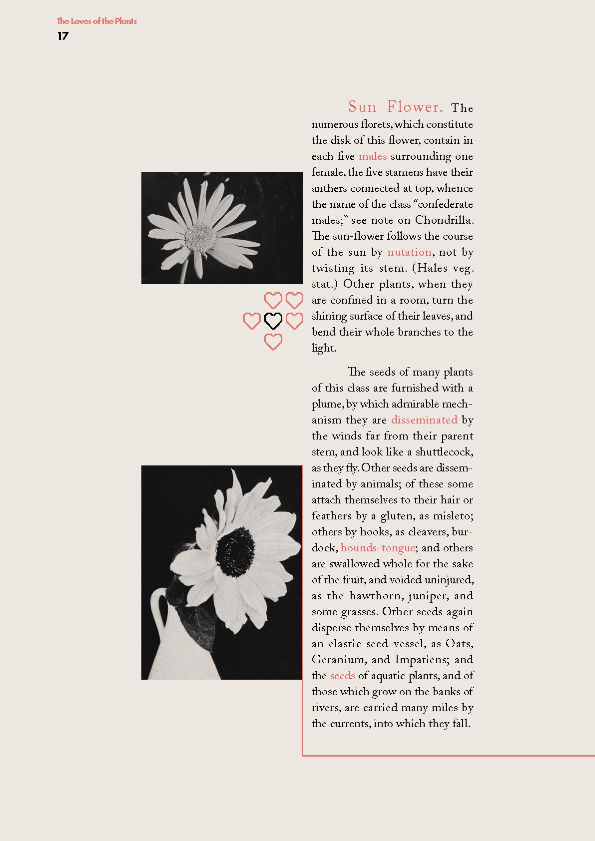 Plants2_Page_06.jpg