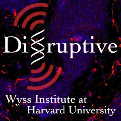Credit: Wyss Institute at Harvard University