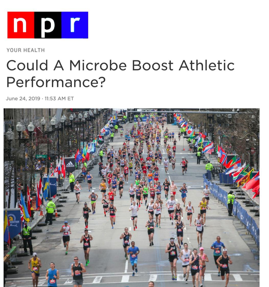NPR.png