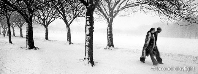 MEADOWS_IN_THE_SNOW_S7-25-26_©bd.jpg