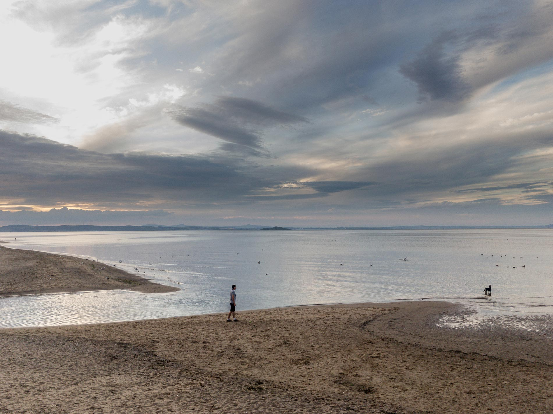 Man and dog - Musselburgh