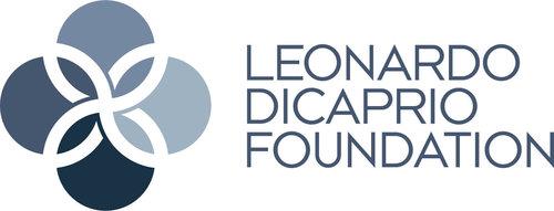 LDF+Logo.jpg