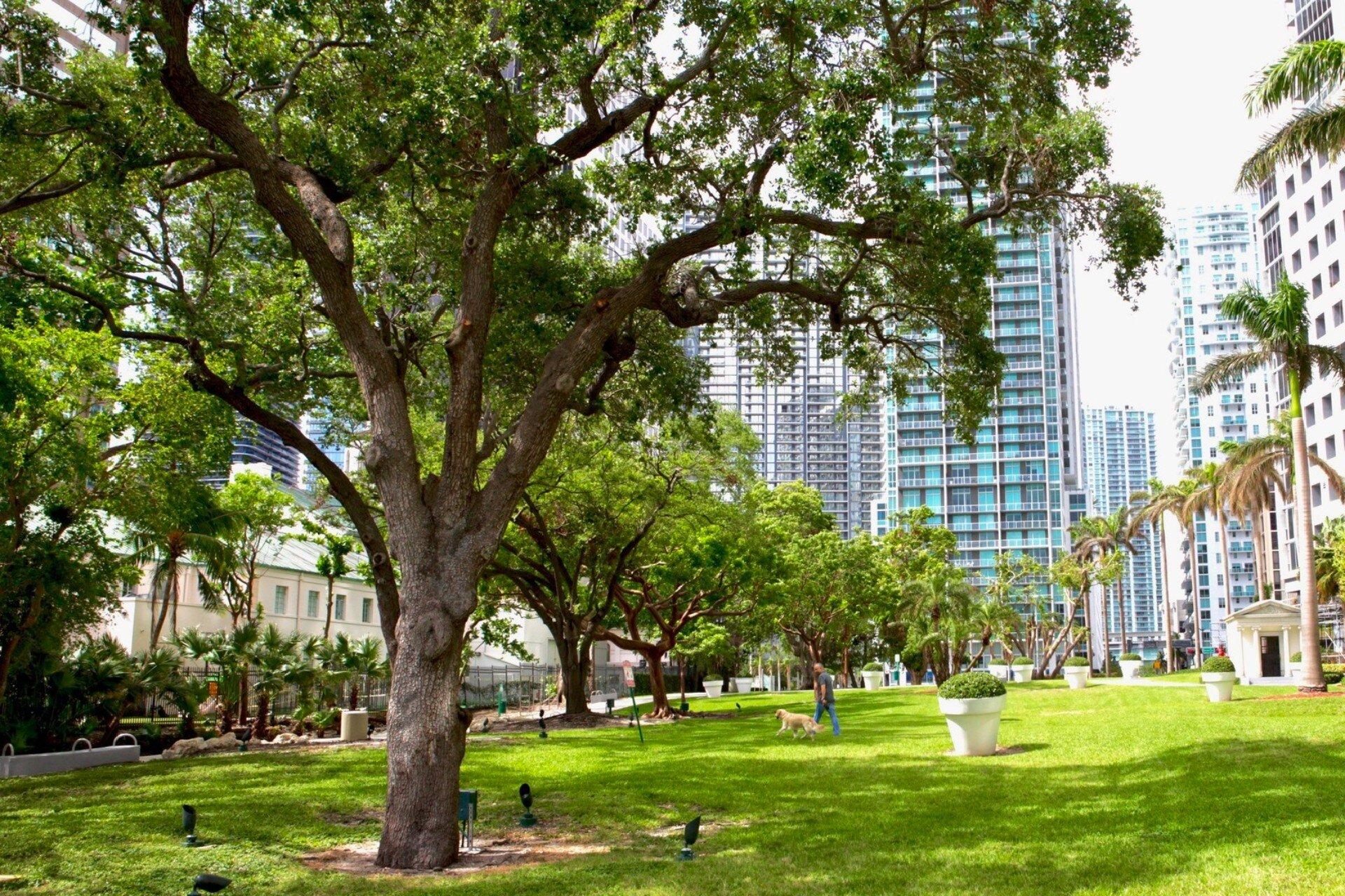 pet-area-brickell-park_lipstickandchicspaces.com.jpg
