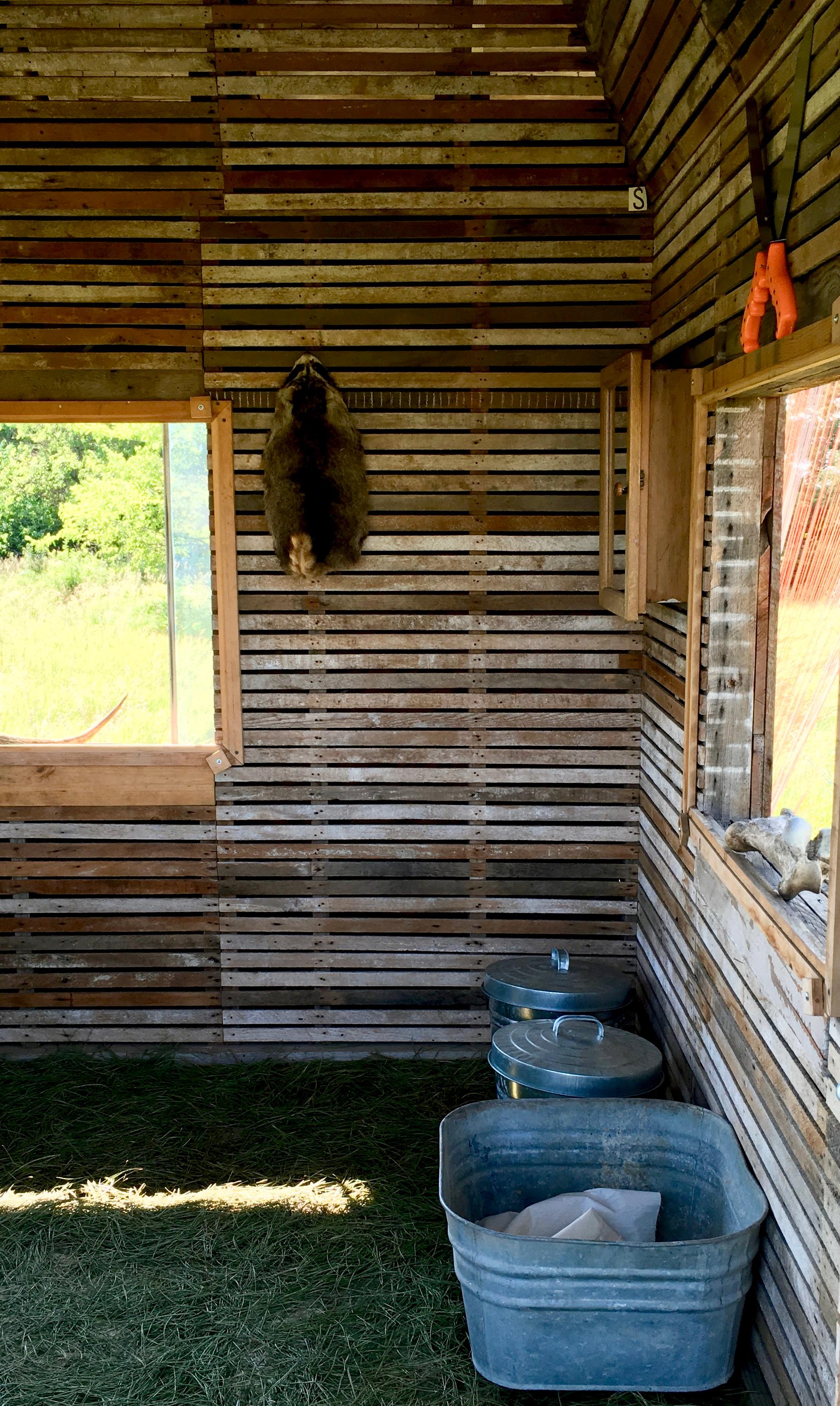 Pine Hut Installation