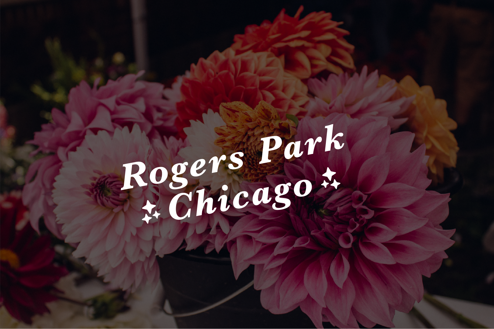Rogers Park detail.png