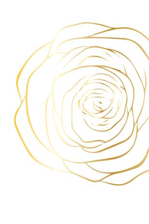pattern2_1 copy.jpg