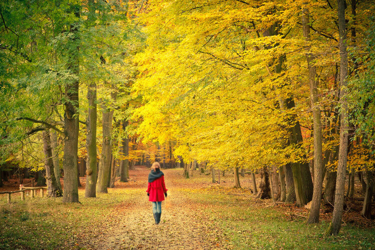 woman-walking-on-autumn-path.jpg