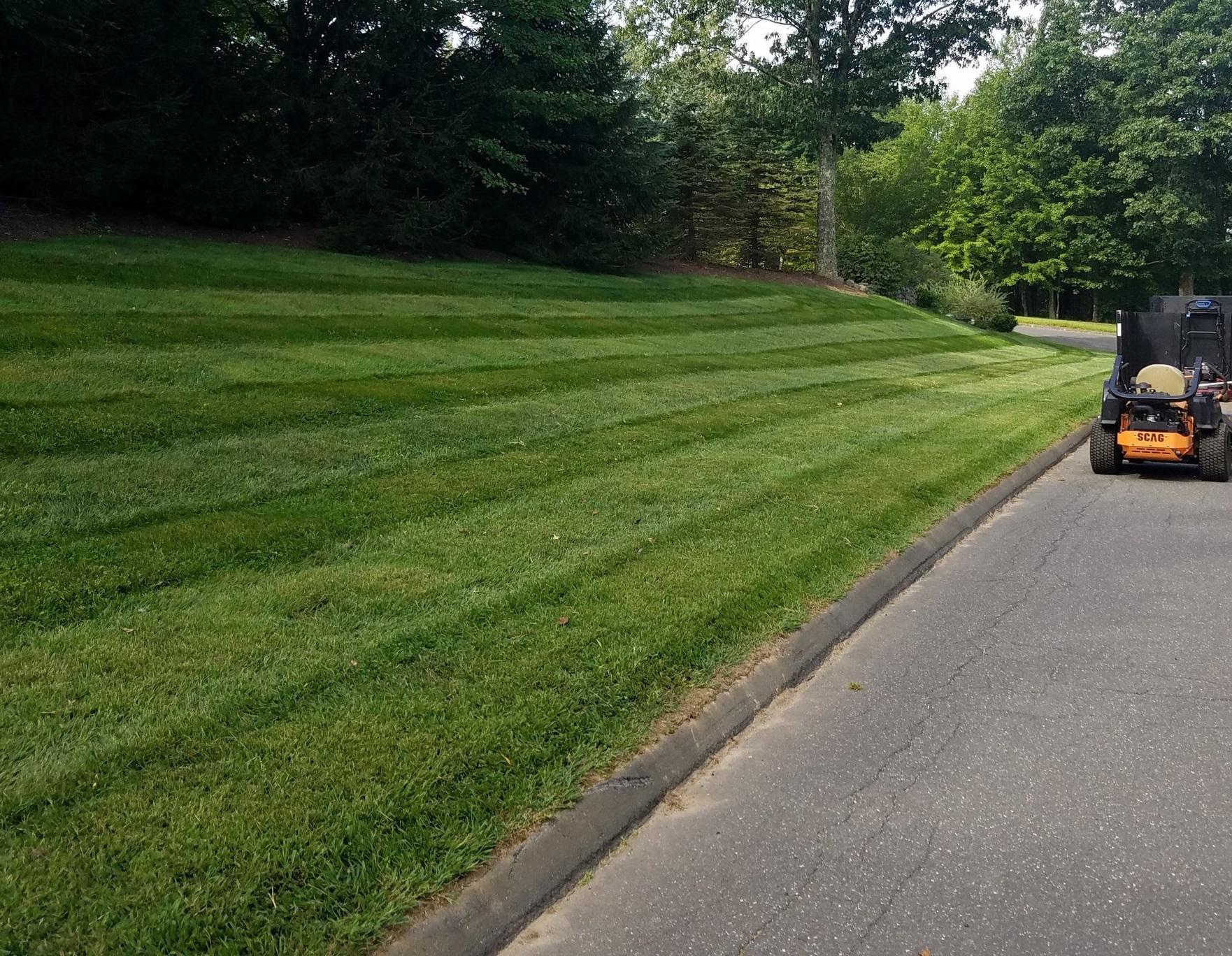 mowing, trimming, edging & blowing - Lawn Maintenance
