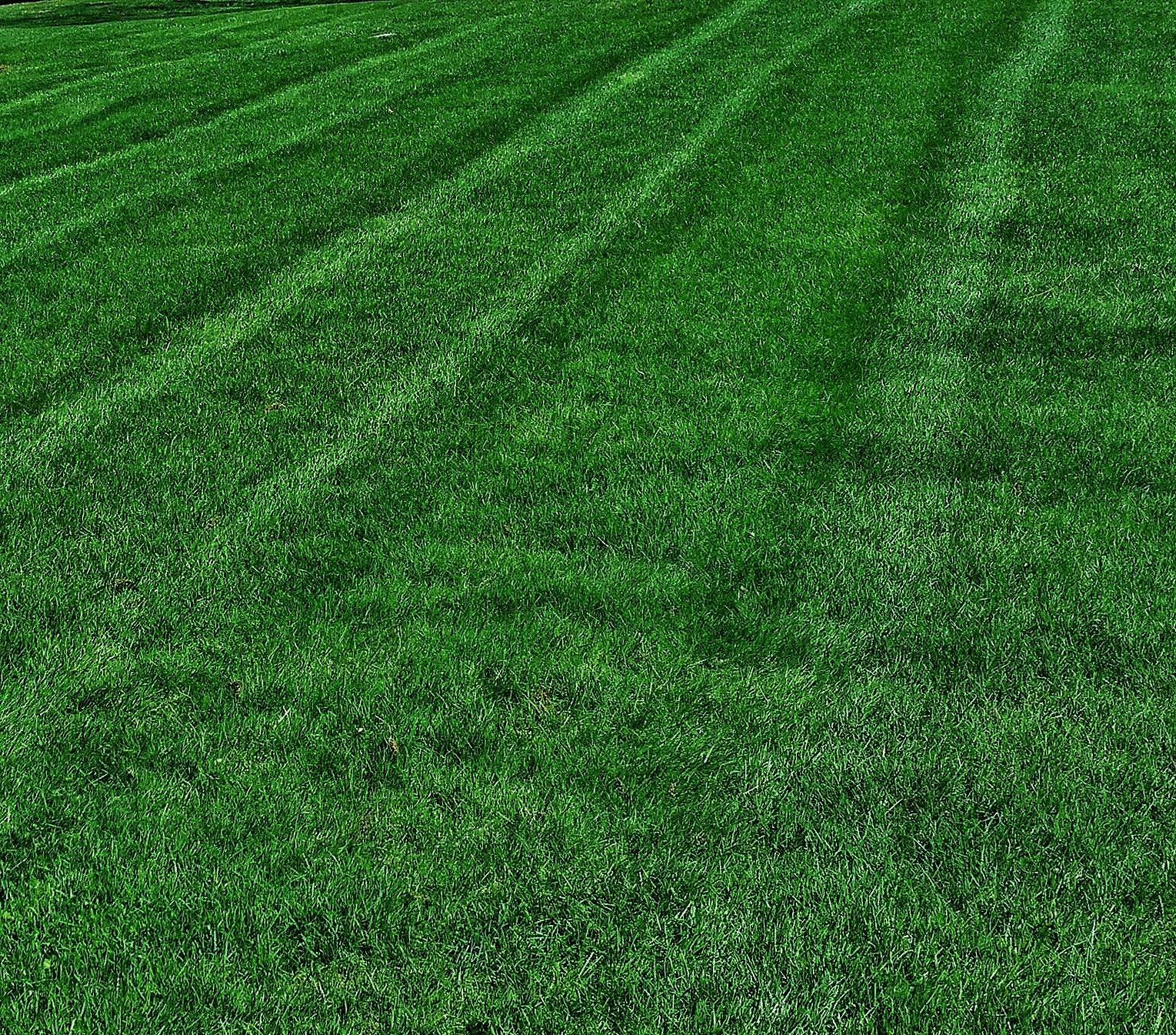 Customized - Fertilizer Programs