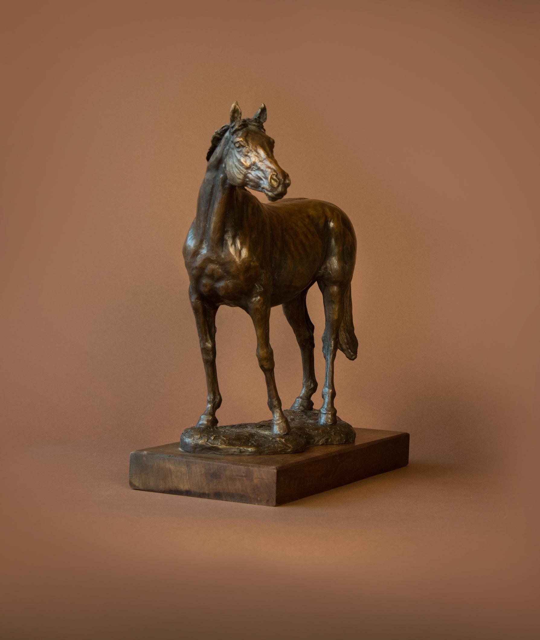 horse03.jpg