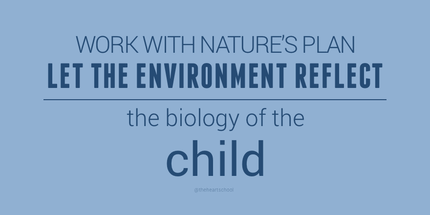 Work with Nature's plan.png