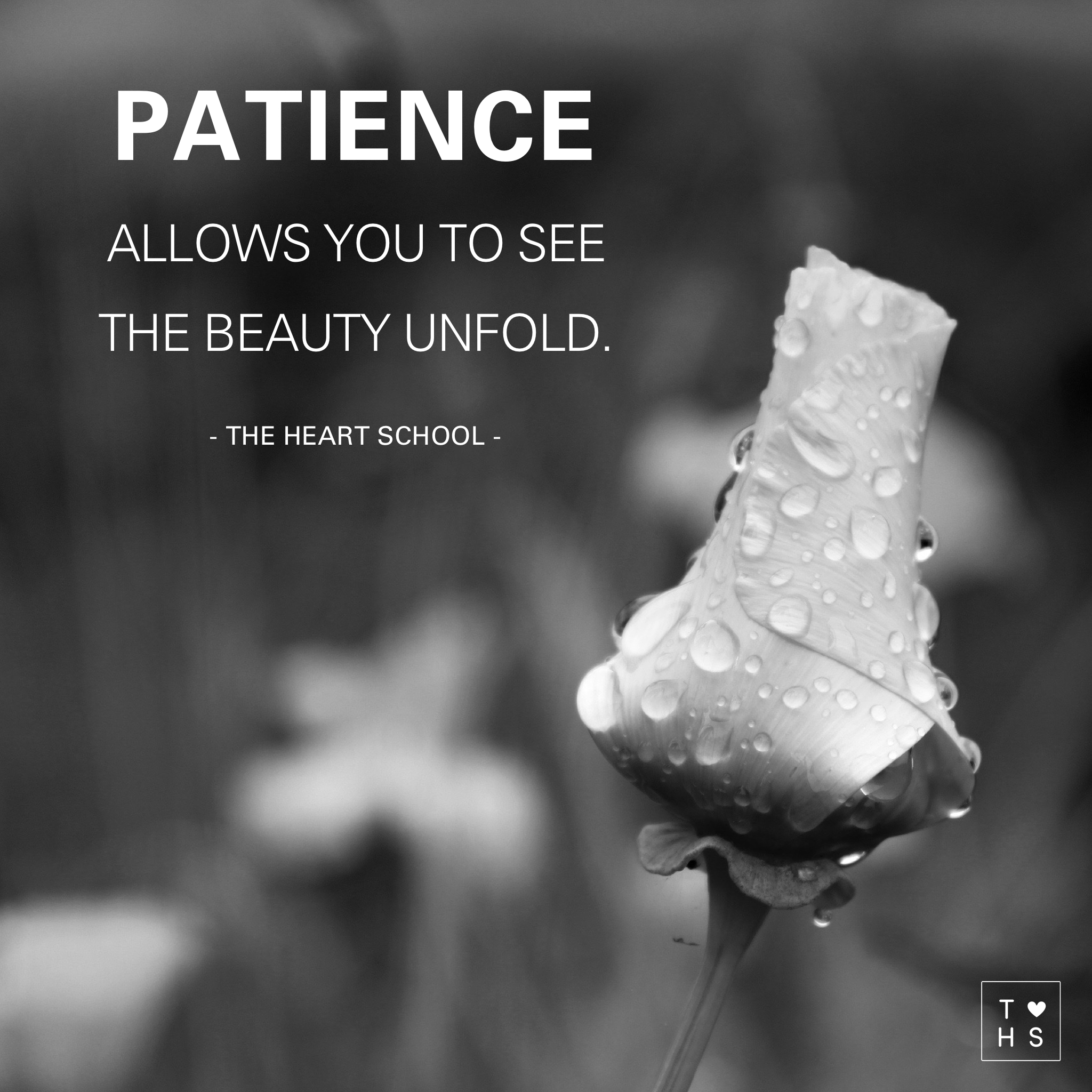 Patience, a virtue that is much harder to come by. Our fast paced society has people wearing busyness as a badge of honour. Instead, focus more on time to be, to dream, to work things out and center the source of your patience on your believes, without expectations of gratification. Have faith and patience will come as a natural response. And with patience comes beauty and kindness.