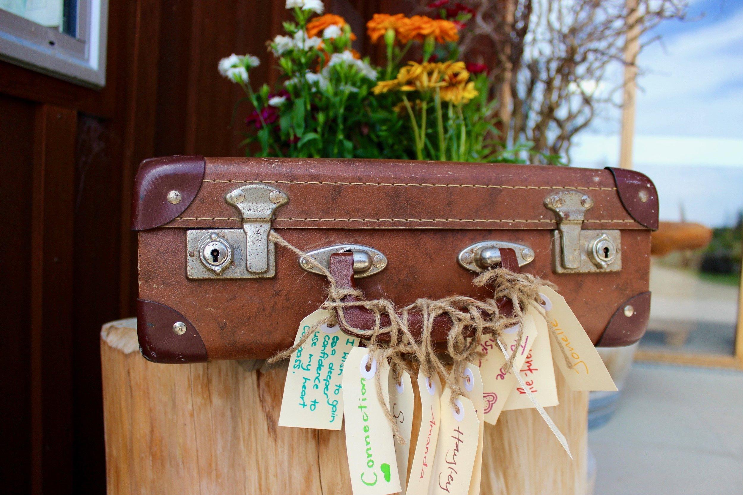 Suitcase toolkits professional development.jpg