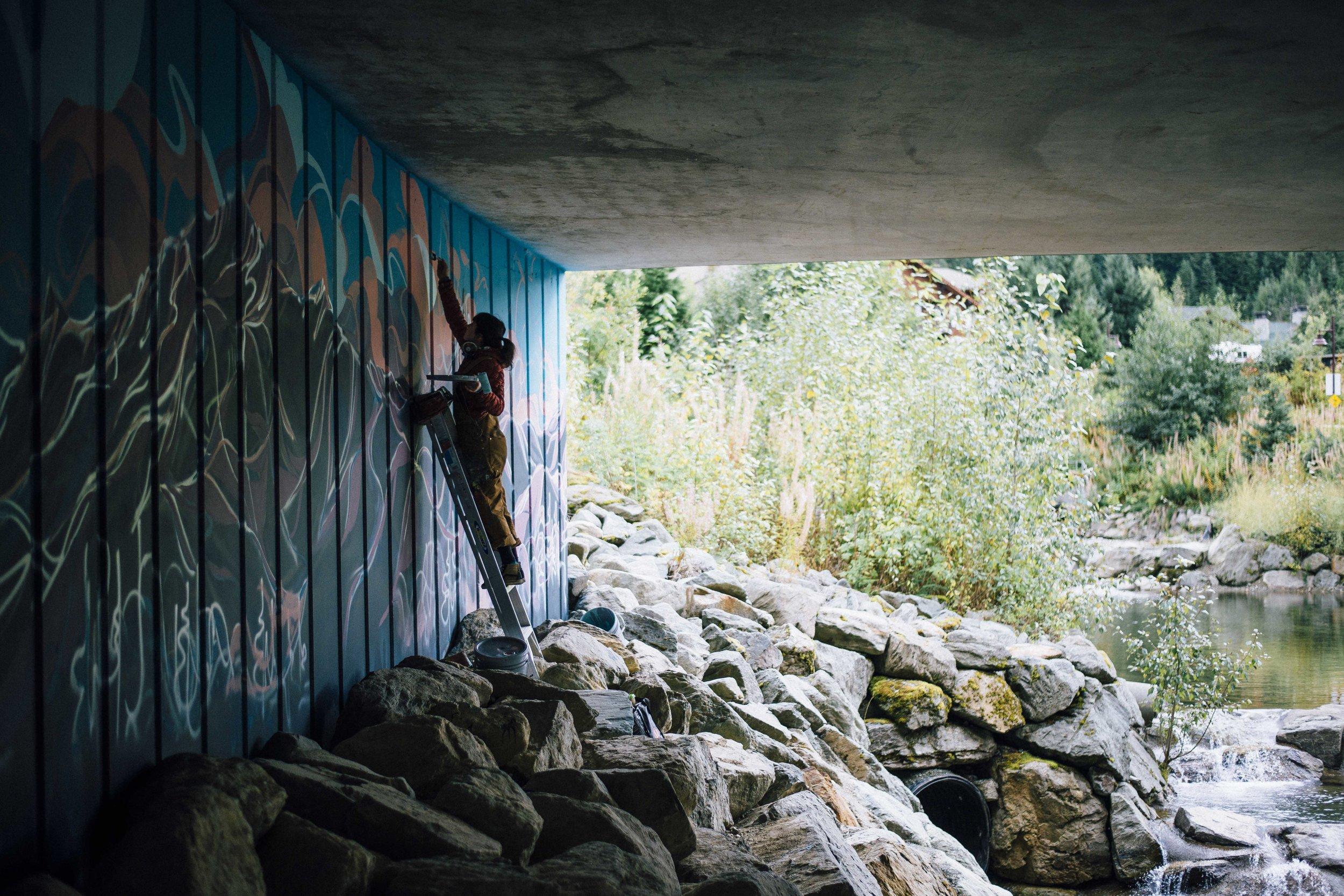 whistlerlow-3962.jpg