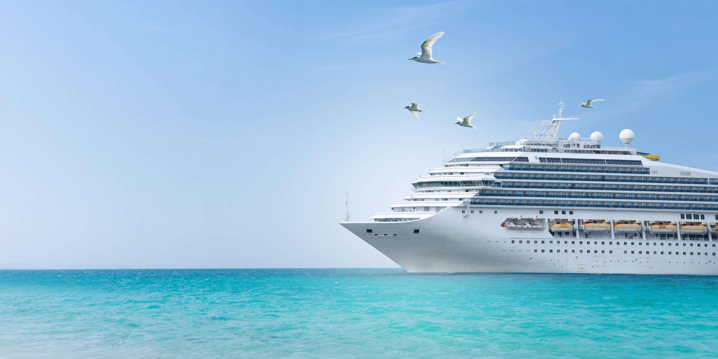 cruise_ship_birds.jpeg