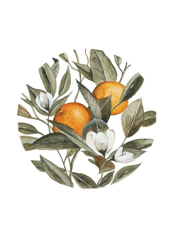 Orange Blossom Print by Shealeen Louise