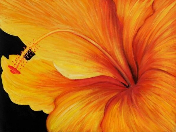 Hibiscus by Georgia O'Keffe