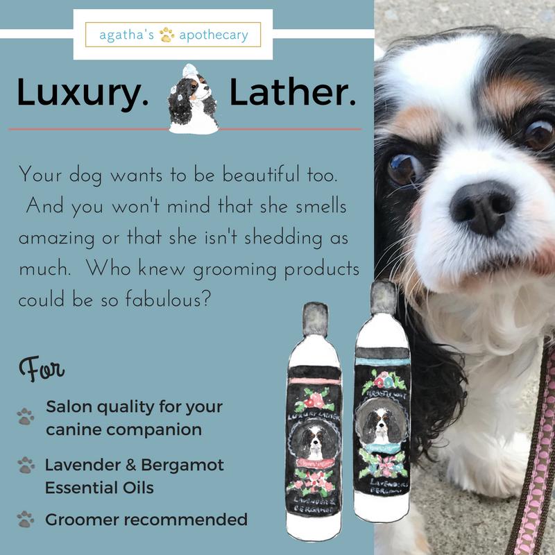 dog shampoo luxury lather