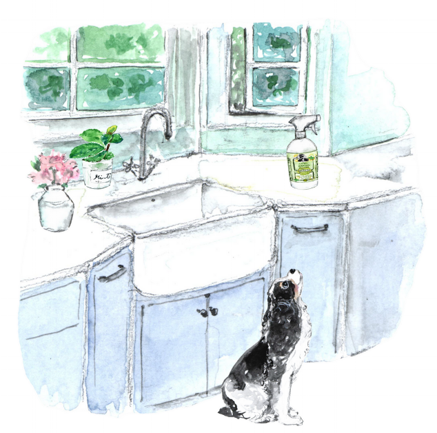 Farmhouse kitchen with Agatha's Peppermint Cleaner