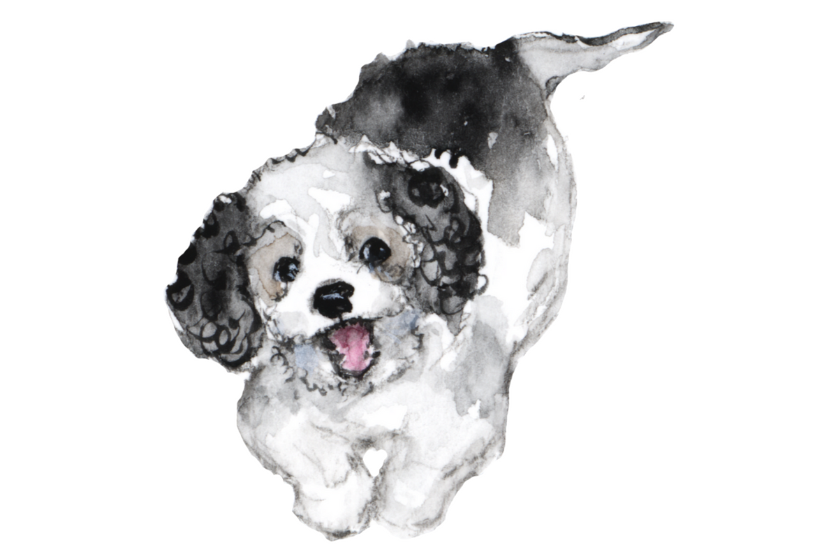 Grooming your dog cute watercolor puppy