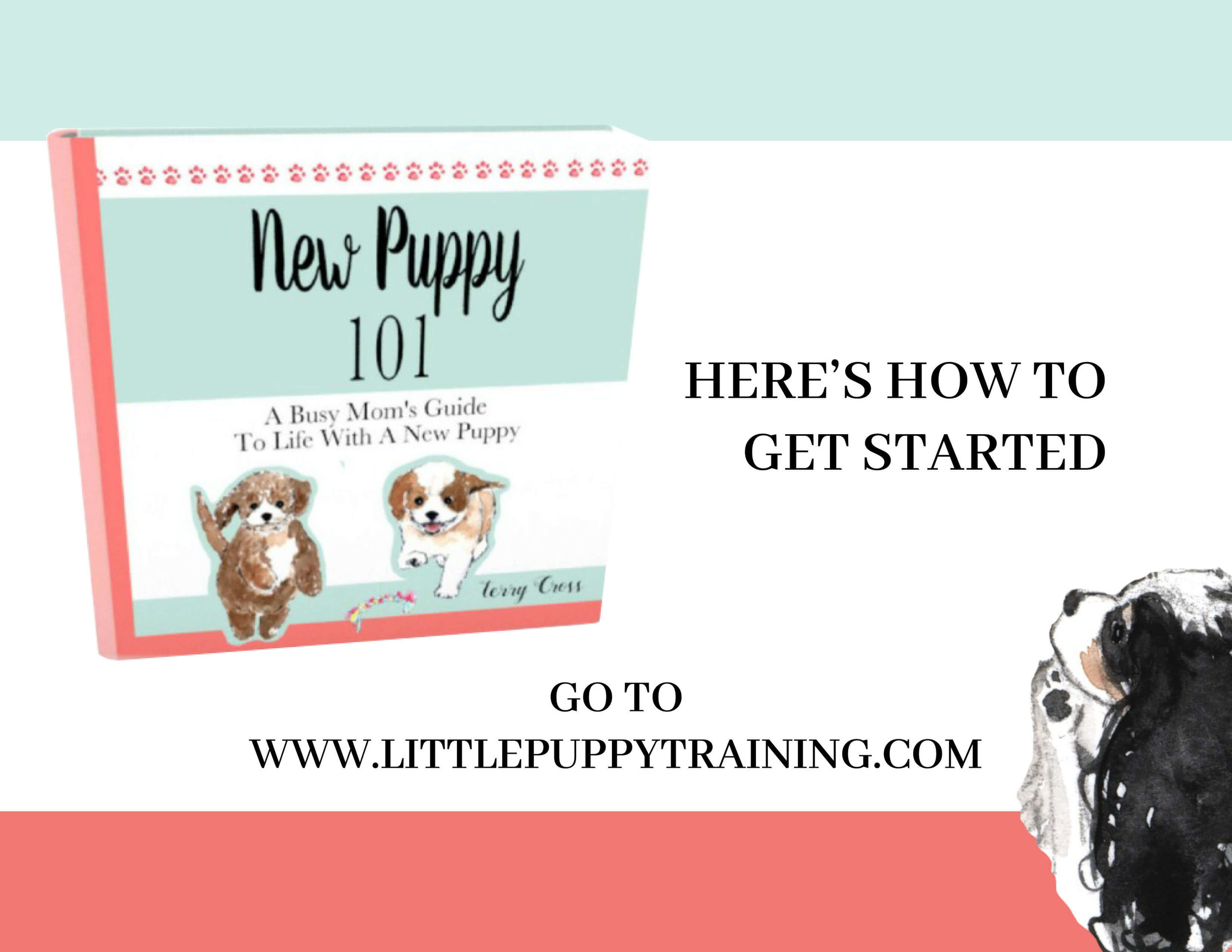 New Puppy 101 Ebook Includes 10 Puppy Rules Printables Flea Free Naturally Ebook Limited Time Special Price 9 99 Agatha S Pet Wellness