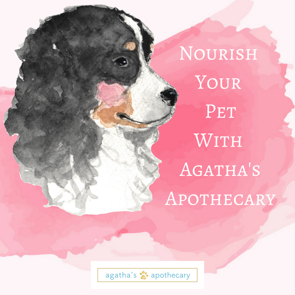 Agathas-Apothecary-Love-Your-Dog-No-Link-1024x1024.png