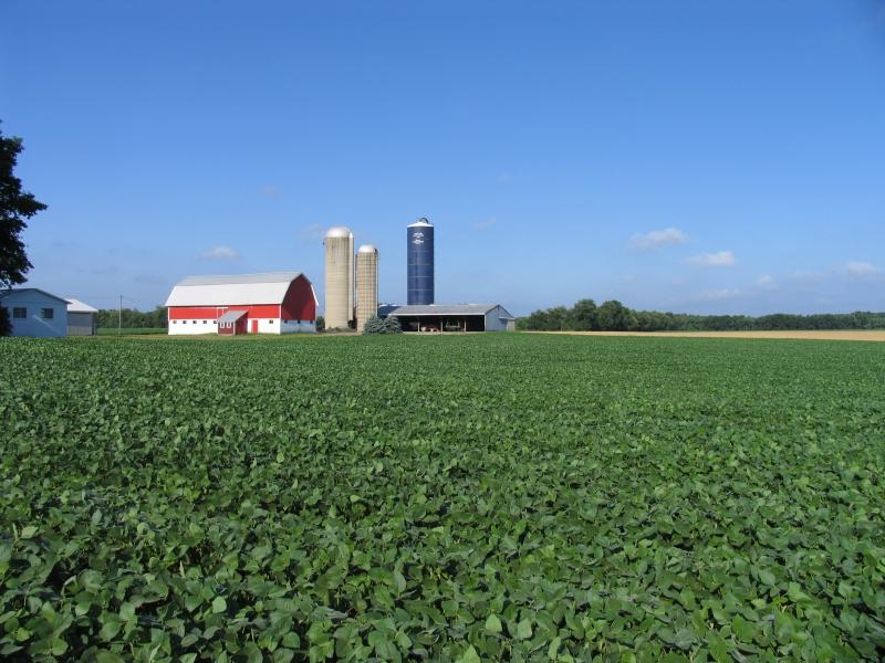 soybean-farmscape-kbs_-lter_-0001.jpg