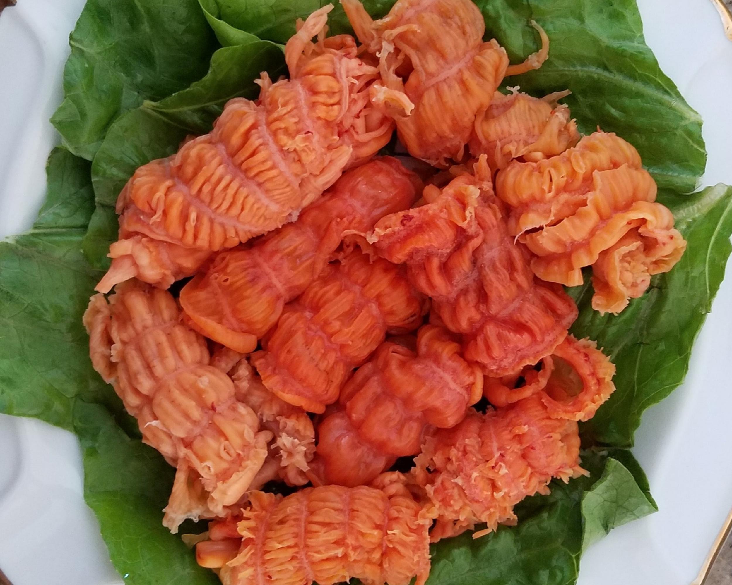 Sea Cucumber Meat