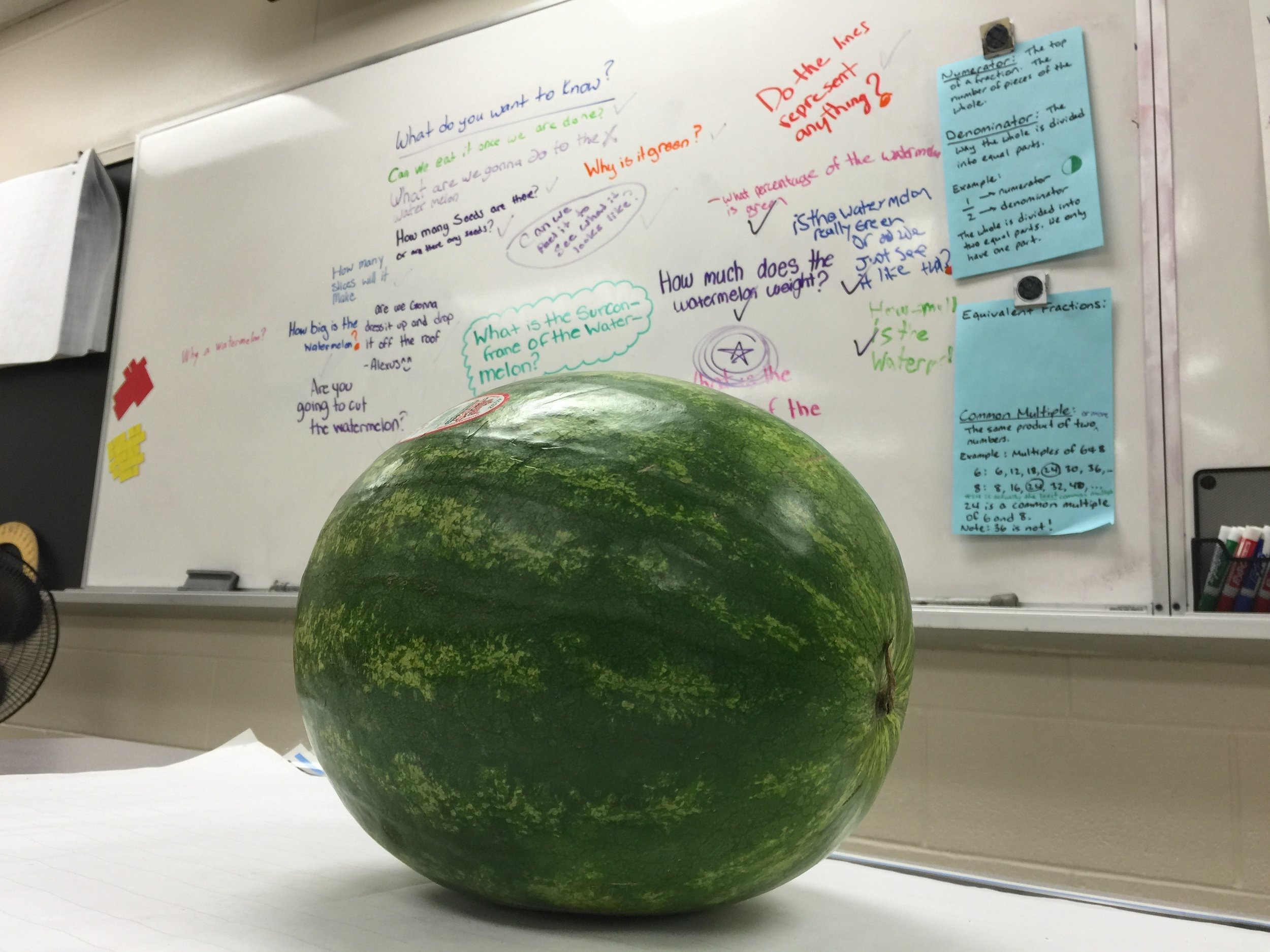 Journal entry #1: The Watermelon Problem.