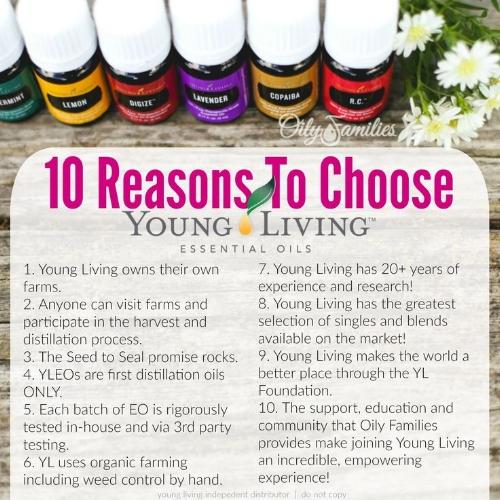 0f7057582eca9921ba90492859ae51c3--young-living-oils-young-living-essential-oils.jpg
