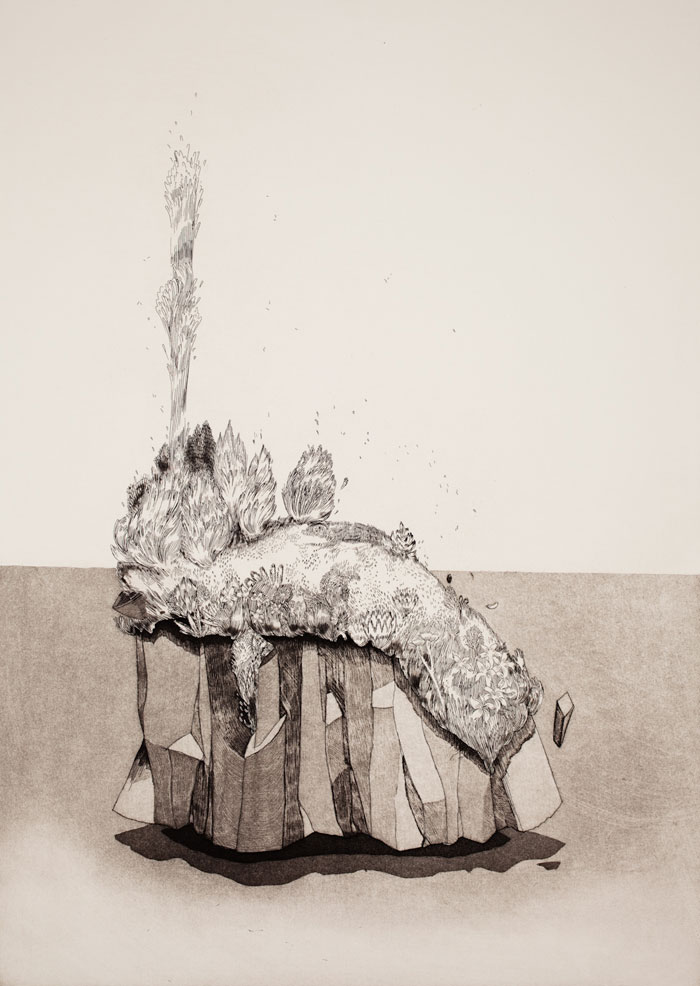 Waterspout ,2011, etching, 14x20 inches, ed. 4/10, unframed (framing options available)