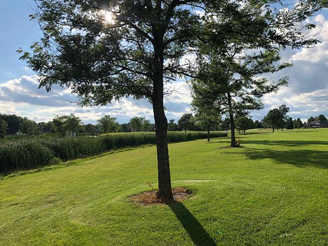 Good morning golfers ☀️ Monday means $30 golf + cart before 1:00 pm today at the course!!! @foxridgegolfclub #mondaygolf #golfer #golffun #foxridgegolfcourse #beautifulgolfcourses #sunnyday #mondayspecial #golfspecial
