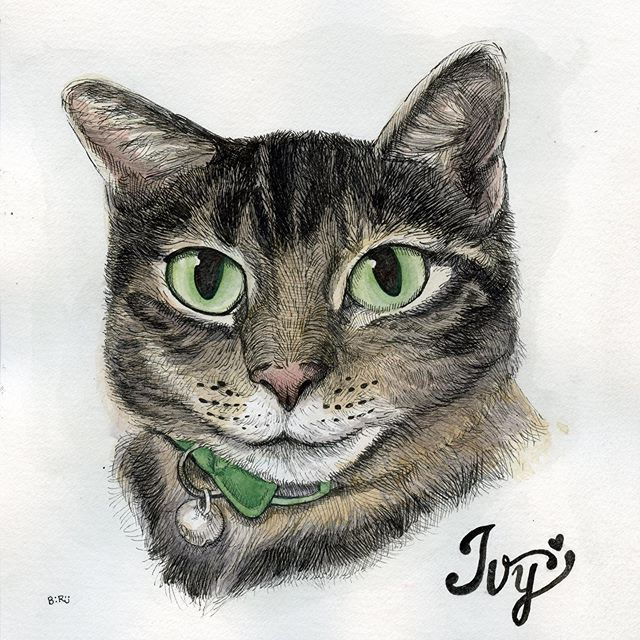 #catsofinstsgram #kitty #drawing #painting #watercolors #artistsoninstagram #staedtler #ink