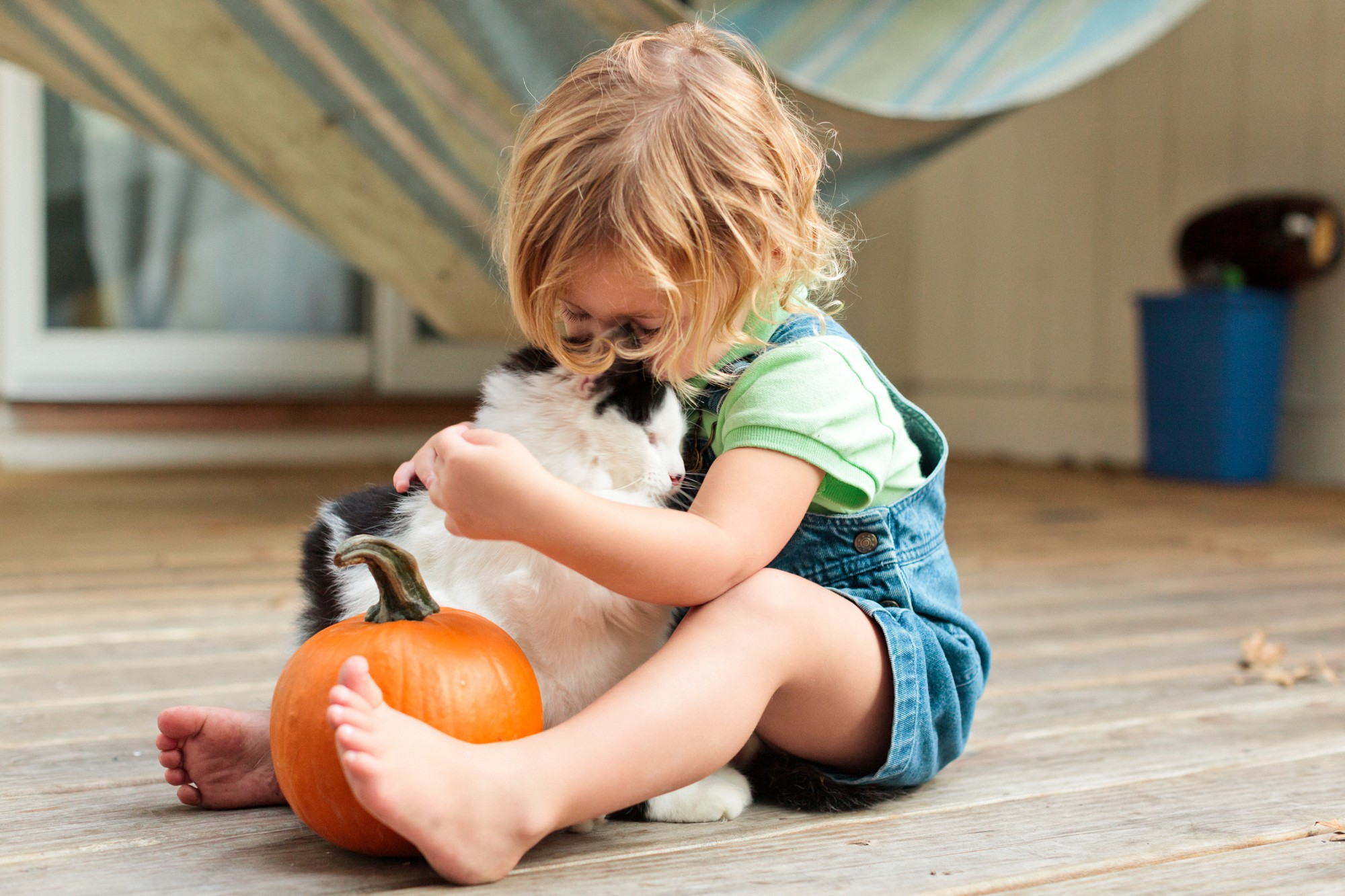 A child and cat