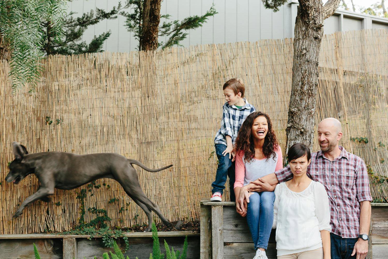 best-family-photographer-in-brooklyn-ny_0067.jpg