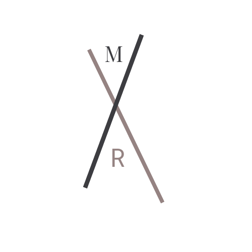 Final MRx X Logo  (Playfair & Roboto).png