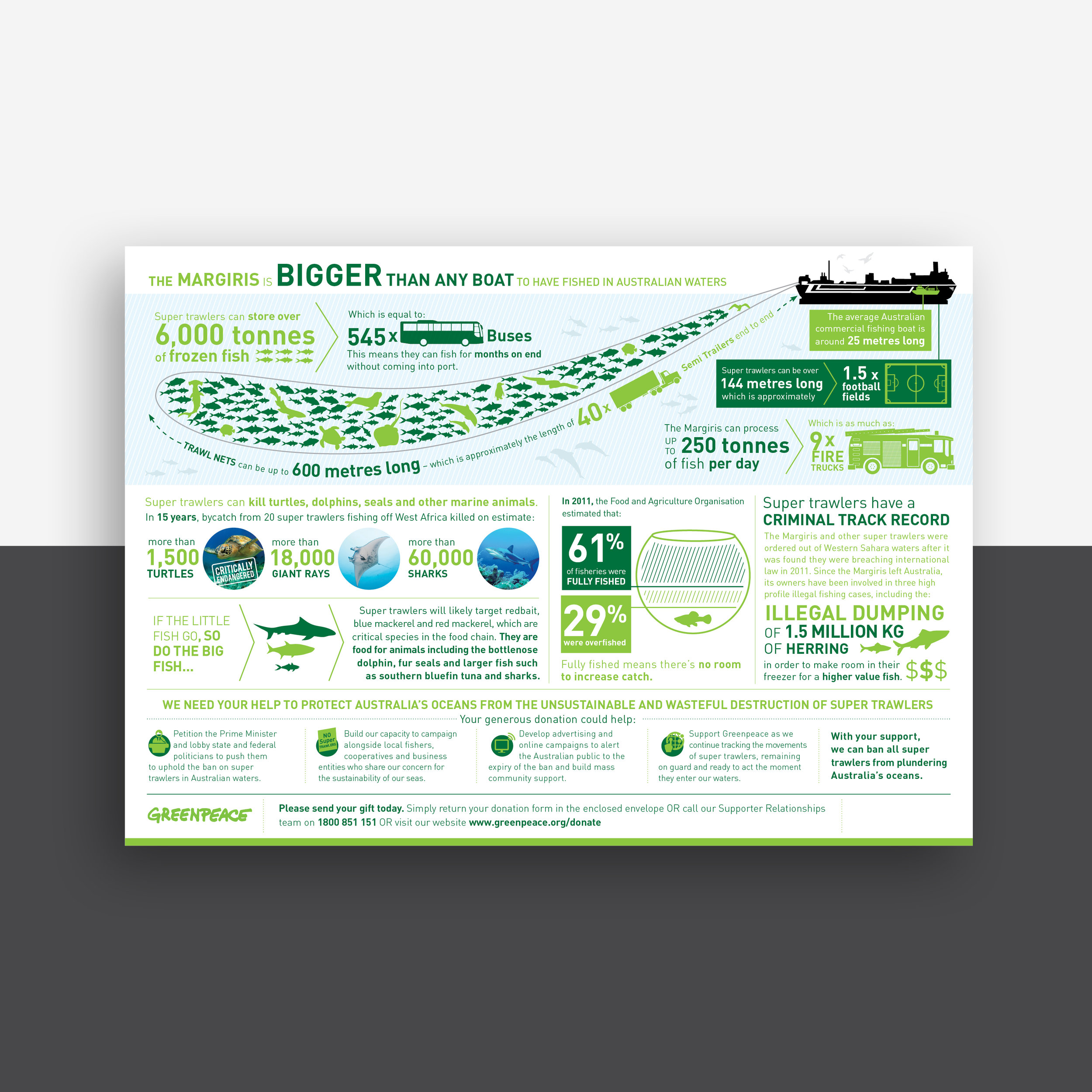 Shanti-Sparrow-greenpeace-infographic-layout-design