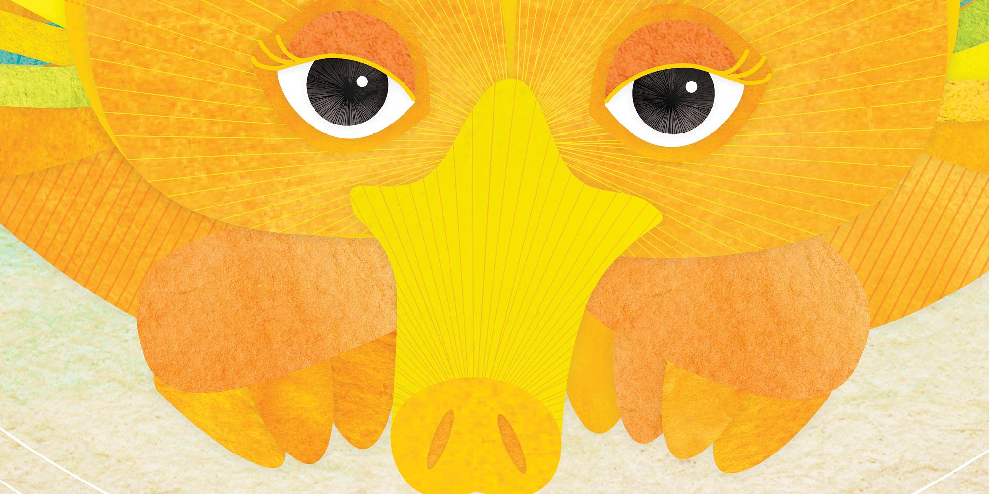 Shanti-sparrow-illustration12.jpg